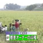 蕎麦オーナーの収穫(2010年12月11日)