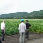 『雅』が日本一のそばの産地幌加内町を視察 (2011年7月19日)